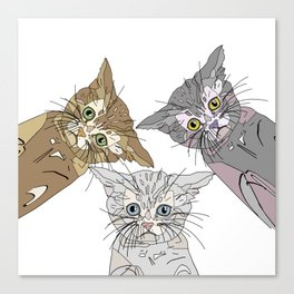 Triple Kitties - Three's Company Canvas Print