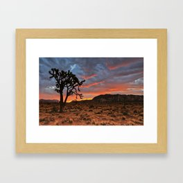 Joshua Tree Sunrise Framed Art Print