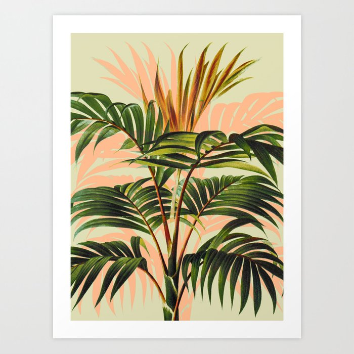 Botanical Collection 01-8 Art Print