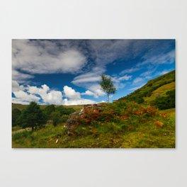 Glen Finglas autumn, Scotland Canvas Print