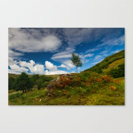 Glen Finglas autumn, Scotland Canvas Print