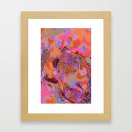 Happy koala bear 2 Framed Art Print