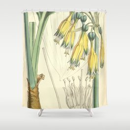 4952 Shower Curtain