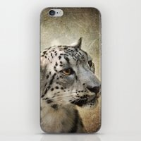 snow leopard iPhone & iPod Skins featuring Snow Leopard by Jai Johnson