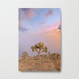 Sunset at Joshua Tree National Park Metal Print