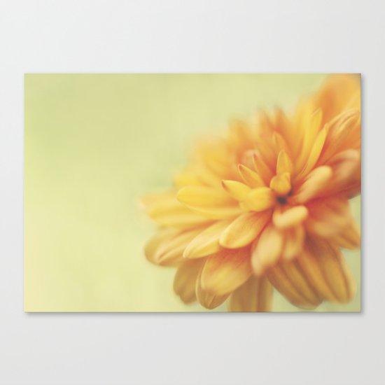 Dreamsicle Canvas Print