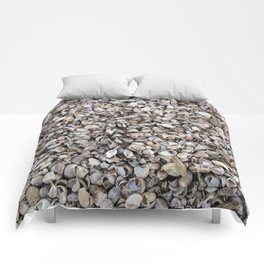 Sea Shell Summer  Comforters
