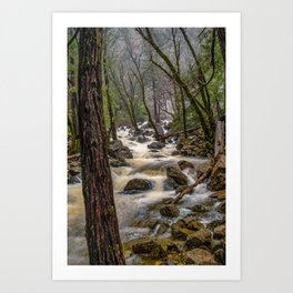 Bridalveil Creek, Yosemite National Park is swollen with snowmelt runoff on an early Spring morning Art Print