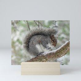 Gray Squirrel Curling Its Tail in a Snowstorm Mini Art Print