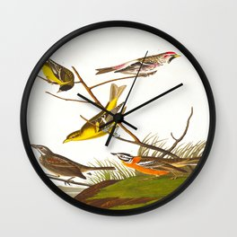 Ankansaw Siskin John James Audubon Vintage Scientific Hand Drawn Illustration Birds Wall Clock