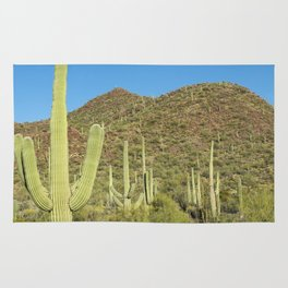 Carol M Highsmith - Saguaro Cactus near Tucson, Arizona Rug