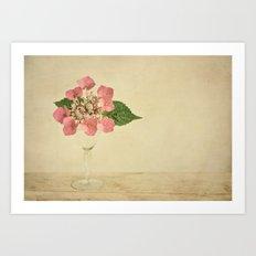 hydrangea vintage Art Print
