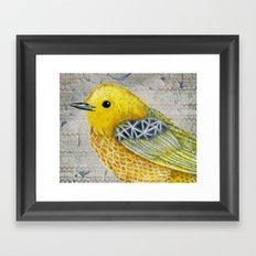 Yellow Warbler Tilly (Vintage Edition) Framed Art Print