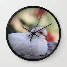 Diamond Dove Wall Clock