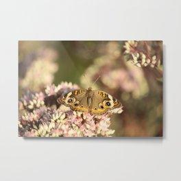 Buckeye Butterfly Macro Metal Print