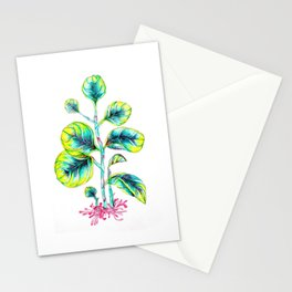 Peperomia Stationery Cards