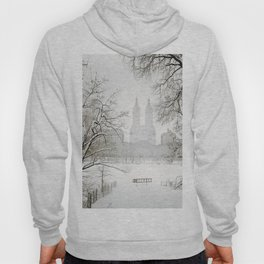 Winter - Central Park - New York City Hoody