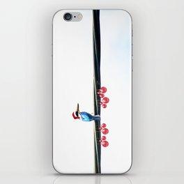 Tis The Season - Kingfisher iPhone Skin
