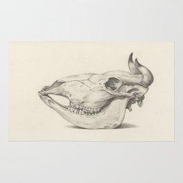 Cow Skull Rug