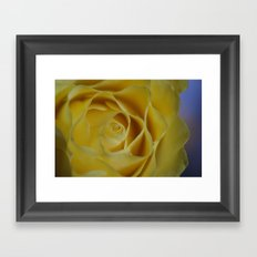 Soft Sherbet Lemon Petals Framed Art Print
