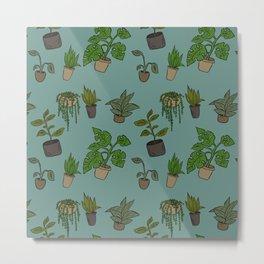 Indoor Plants Metal Print