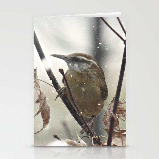 Carolina Wren in Winter Stationery Cards
