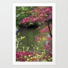 Red Summer Art Print