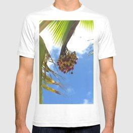Puerto Rico Condado beach fruit T-shirt
