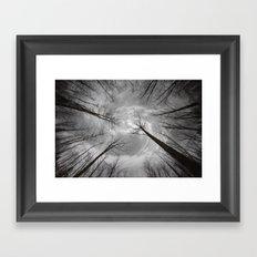 Seeker's Quest Framed Art Print