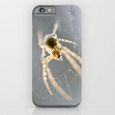 Little Spider iPhone 6s Slim Case