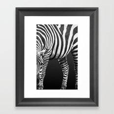 Patterns in Nature: Zebra Framed Art Print