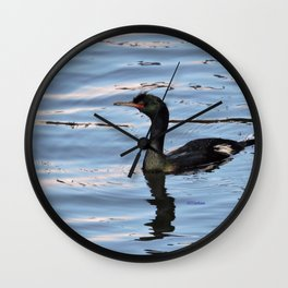 Pelagic Cormorant Wall Clock