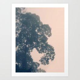 Borneo sunrise in dreamy pastels Art Print