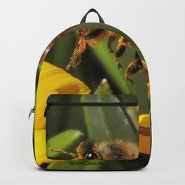 Pollen Express 221 Backpack