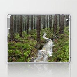 Water always flows downhill Laptop & iPad Skin