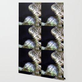 Ophidiane Cacti Wallpaper