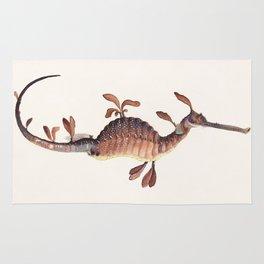 Leafy Sea Dragon Rug