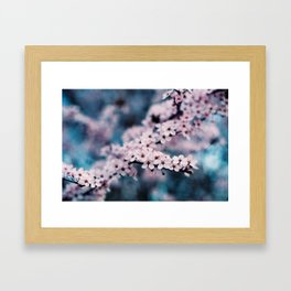 springtime #1 Framed Art Print