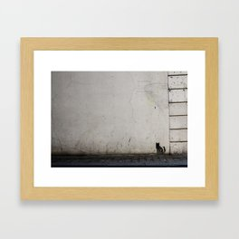 Ireland 54 Framed Art Print