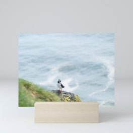 Puffin with fresh catch on a rock at Cape Ingolfshofdi   Travel photography Iceland Mini Art Print