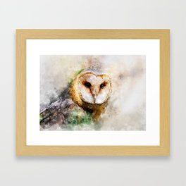 Watercolor Barn Owl Framed Art Print