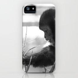 Wildlife Collection: Capuchin Monkey iPhone Case