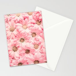 Lovely Pink Daisies Stationery Cards