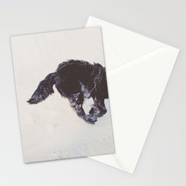 duncan Stationery Cards