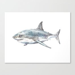 Shark-Filled Waters Canvas Print