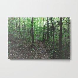 Pfeiffer Arboretum VII Metal Print