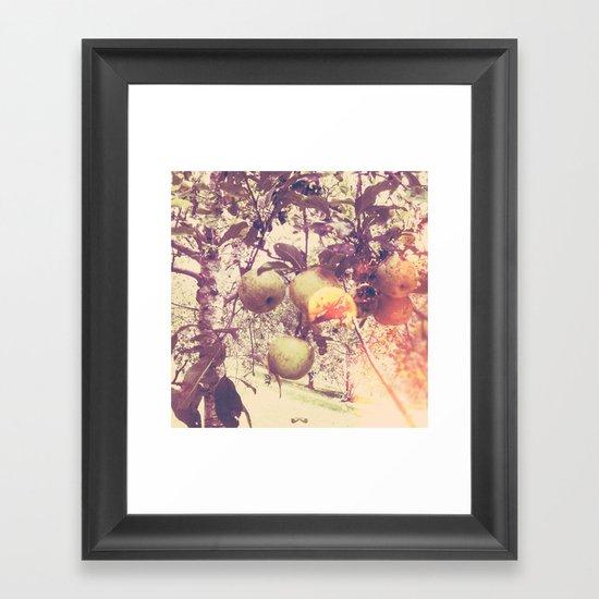 Harvest. Framed Art Print