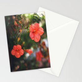 Neighborhood Flowers Stationery Cards