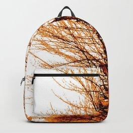 Autumn in Lynnwood Backpack