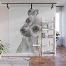 Chihuahua Dog Wall Mural